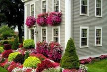 Landscape and Gardening