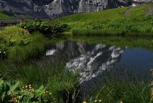 grindelwald swiss / Grindelwald en omgeving