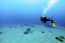 Diving in Greece / Dive in waters full of sea life and discover rich ocean flours