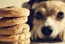 Dog Food and Feeding