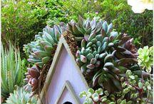 Yardworks- / -Garden Boxes.Paving Stones ,Pathways ,Yard Planting-