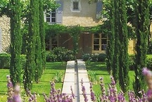 Home & Garden Inspiration  / by Mary Roach