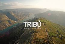 The world of Tribù