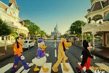 Disney / by Laicee Milne