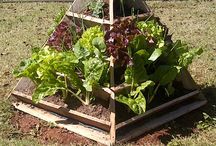 The Amazing Pyramid Planter / The most practical, manageable, water and nutrient efficient & ATTRACTIVE food garden, ever!