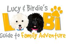 Meet Lucy & Birdie / Hi!  We're Lucy & Birdie.  Together we are your Loobi Guides to family adventure.   Lucy is a pure bred bichon, and her BFF, Birdie, is a mixed breed PB&J unlike any other!  In case you are wondering, that's a Poodle, Beagle, Jack Russell mix :)  So, Wow! We have a lot of work to do around here!  We love kids clothes & creative kids fun, but we're expanding into Family Adventure!  We like to be on the go!