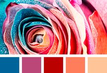 värikartat
