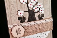 SU Nuts About You / DIY Cards / by Kathy Coignard