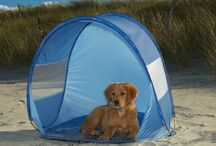 Dog Beach Gear / Gear and products for Dogs while at the beach