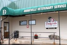 Dodgeville Veterinary Service