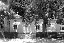 EL JARDIN DE EL CAPRICHO / Imágenes de este maravilloso parque lleno de rincones secretos, misterios y símbolos masónicos