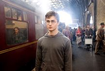HPTP ⚡️ / The Wizarding World of Harry Potter