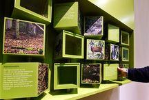 exponate interactive