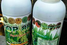Pupuk Organic | Herbal | Top 88 Buah | Bibit | Peternakan | Pertanian / Pupuk Organic serta Herbal Top 88 | PUPUR HERBAL UNTUK PERTANIAN, PERIKANAN, PETERNAKAN TOP 88 Anjuran dosis untuk padi,1 hari sebelum tanam semprotkan 40 ml TOP 88 ke tangki (14 liter) tipis merata ke lahan tanam.  Umur 3 hari, 7 hari, 11 hari setelah tanam, semprotkan 40 ml per tangki (sebagai awalan) berikutnya interval 7 hari sekali sampai dengan menjelang panen.