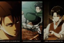 Shingeki no Kyojin/Attack on Titans