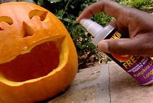 Halloween / by Raven Maddox