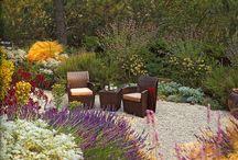 Garden / Garden is history, rendezvous, meeting between man and nature