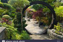 Zen Patios and Backyards / Zen Gardens inspired landscaping and design