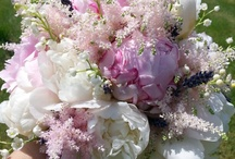 Cristina Faluomi Flower Designer