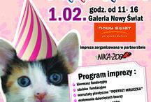"""2014 DZIEŃ KOTA Z FUNDACJĄ FELINEUS- ODSŁONA 1 / """"PORTRET MRUCZKA""""  1.02.2014, Galeria Nowy Świat , Rzeszów  godz. 11- 16  SERDECZNIE ZAPRASZAMY!!!"""
