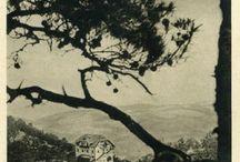 vintage photos of Elafos hotel