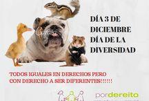 CARTELES FACEBOOK / CARTELES REIVINDICATIVOS PARA FACEBOOK DE POR DEREITO
