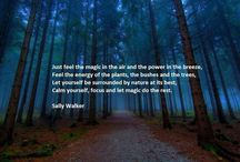Nature soothes me.... / by Pamela Brown