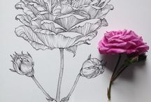 Цветы-рисунок