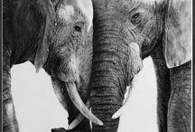 Wildlife in Art, looking around / My preferred wildlife artists pinned from web world