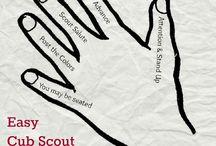 Cub Scout Flag Ceremonies