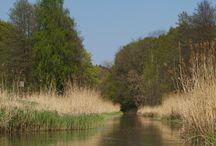 Warnow / Von der Einsetzstelle nahe Schwerin können wir fast 115 km paddeln (mit Ausnahme eines aus Gründen des Naturschutzes gesperrten Abschnitts). Fließt die Warnow anfangs fast wild in praller Natur durch Wald, Wiesen und das Warnow-Durchbruchstal, wird sie später ein ruhiger Wanderfluss in abwechslungsreicher Landschaft vorbei an kleinen Orten und Städten bis zur Hansestadt Rostock.
