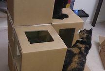 Catstuff