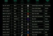 Zodiac / Astrology