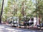 Camping / Forever Resorts manages campgrounds at Oak Bottom Marina, Whiskeytown Lake, Pleasure Cove Marina, Steele Canyon and Spanish Flat on Lake Berryessa, and Pinewood Cove, Trinity Lake Resorts and Marinas