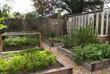 cutting garden rm