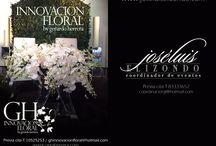 GH gerardo herrera / Innovación Floral