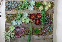 idee giardino verticale