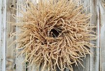 Fall Decor / by Susie Johnson