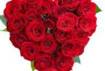 Valentine's Day Ideas / Flowers for valentine's day
