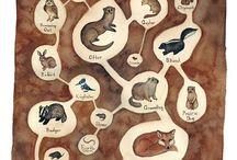 Yeraltı hayvanları (underground