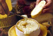 queso / quesos del mundo  queserías recetas con queso