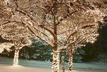 SEASONS: Winter Wonderland / elements of farmhouse style winter