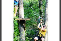 Sooie-t! / Retreat.  High Above the Forest Floor  locoropes.com   goloco@locoropes.com   (888) 669-6717