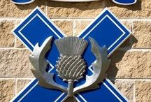 Knox grammar school / This is my school Knox grammar school