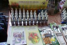 Bazar Vegano Primavera 2014
