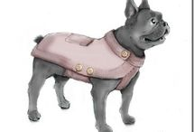 pet coats and blankets / by Linda Edgecombe