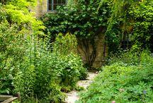 ogród Dębniki