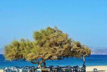 Naxos island (Νάξος)