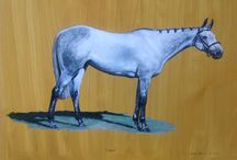 Spoof / Painting progress of Spoof. Owned and trained by Humphrey Dooks in Lincolnshire in 1953