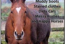 Horse life..!